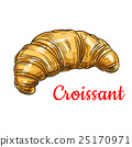 croissant, vector, pastry 25170971