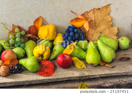autumnal still life with fruit and leaves 25197451