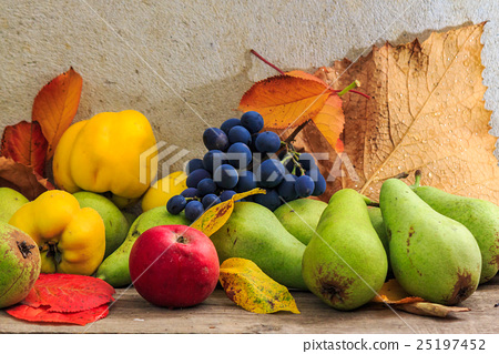 autumnal still life with fruit and leaves 25197452