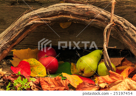autumn still life with fruit in leaves on board 25197454