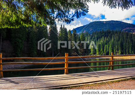 fence on mountain Lake near  forest 25197515