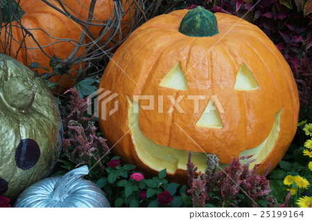 Halloween big pumpkin 25199164