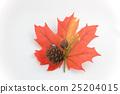 halloween, orange, oranges 25204015