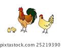 鸡公鸡科钦 25219390
