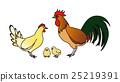 鸡眼的科钦 25219391