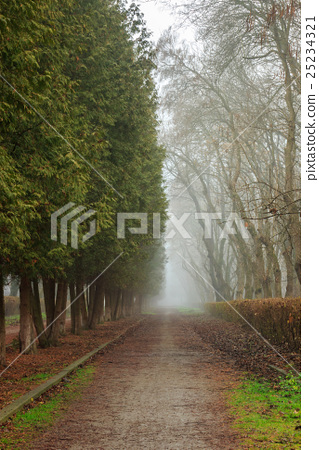 Road In Mysterious a bit creepy and misty Park 25234321