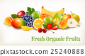 Fresh Organic Fruits And Berries  25240888