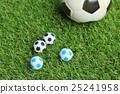 Soccer ball on field 25241958