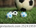 Soccer ball on field 25241959