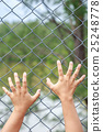 Hand hanging on metal chain link fence 25248778