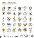 Flower, thin line icons set , Pixel perfect icons 25248830
