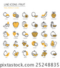 Fruit , thin line icons set ,pixel perfect icon 25248835