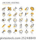 Vegetable , thin line icons set  25248849
