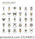 Insect , thin line icons set ,pixel perfect icon 25248851
