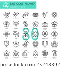 Flower, thin line icons set , Pixel perfect icons 25248892