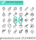 Vegetable , thin line icons set  25248954