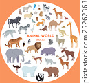 Set of World Animal Species Vector Illustrations. 25262363