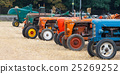 Old tractors 25269252