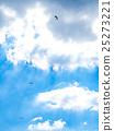 藍天 飛翔 高崖跳傘運動 25273221