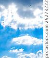 藍天 雲彩 雲 25273222