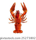 Red Lobster, Isolated Illustration 25273802
