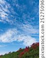 푸른, 하늘, 석산 25275096