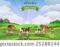 farm, cow, vector 25288144