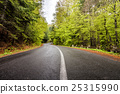 curved, forest, mountain 25315990