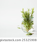 Fresh italian herbs in water 25325908