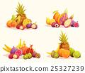 set tropical fruit 25327239