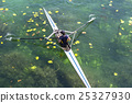 A Young single scull rowing competitor paddles 25327930