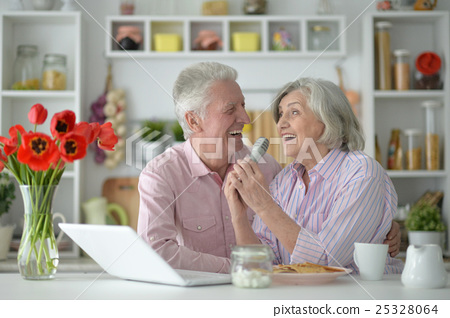 Senior couple  and microphone and laptop 25328064