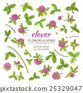 clover vector set 25329047