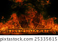 banknotes, burn, fire 25335615