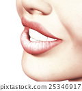 close-up, lip, lips 25346917