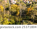 Autumn colorful trees and family houses in village 25371804