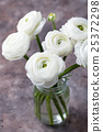 White ranunculus flowers in a glass vase 25372298