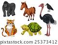 Set of different wild animals 25373412