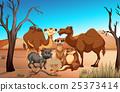 Wild animals in the savanna field 25373414