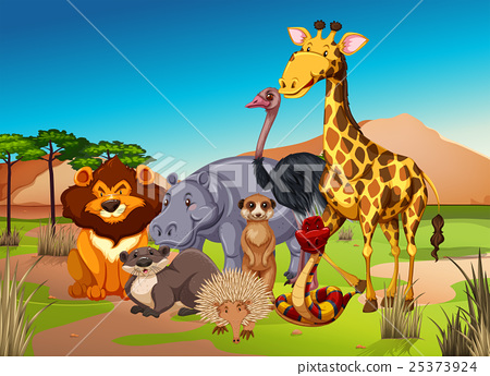 Many animals in the grass field 25373924