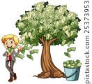 Money grows on tree 25373953