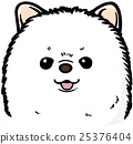 pomeranian, toy, dog 25376404