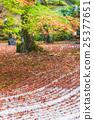 Komyozenji Temple in autumn season,selective focus 25377651