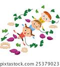 馬鈴薯田 紅薯 地瓜 25379023