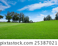 Land Scape Wide green lawns 25387021