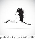 Vector of stork flying on white background. 25415007