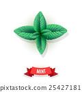 mint, leaf, peppermint 25427181