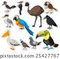 Sticker set with many birds 25427767