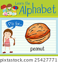 Flashcard letter P is for peanut 25427771