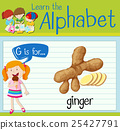 Flashcard letter G is for ginger 25427791